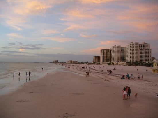 Clearwater Beach: such a pretty view looking north from the pier