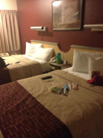 Red Roof Inn San Antonio - Airport : CLeanliness....Decor...GRAND..