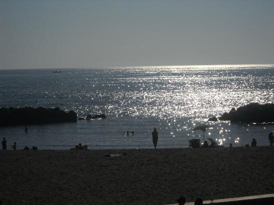 Hotel Del Mare: The beach has a cove and tidepool, lots of kids and families