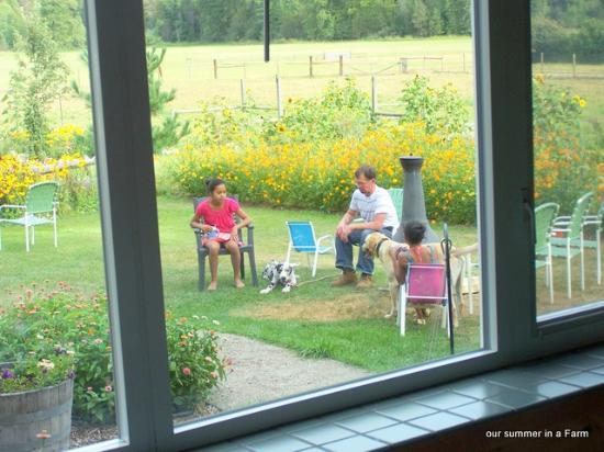 Cedar Mountain Farm Bed and Breakfast: outside the window from the Dining