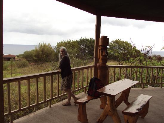 Tekarera Kainga Ora & Kainga Nui: room view