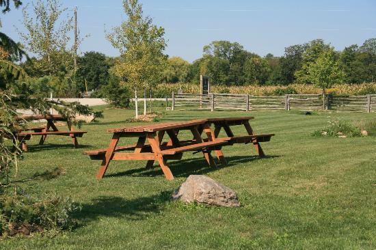 Spirit Tree Estate Cidery: Picnic Area