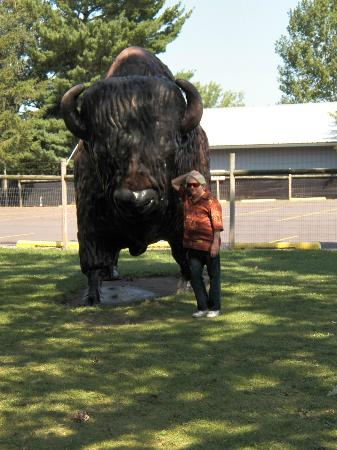 Wisconsin Deer Park: Big buffalo statuary
