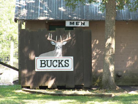 Wisconsin Deer Park: Corny