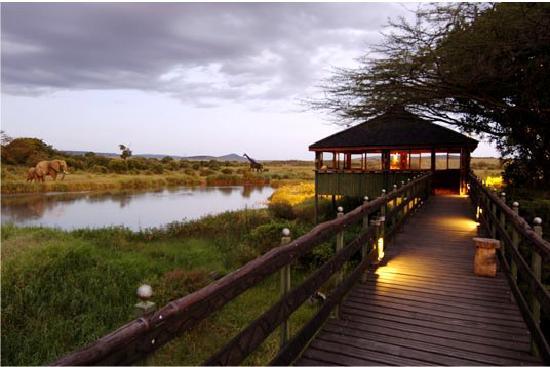 Keekorok Lodge-Sun Africa Hotels : Hippo Bar