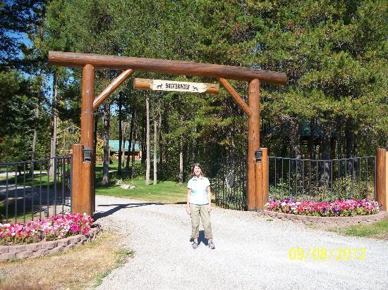 Silverwolf Log Chalet Resort Entrance