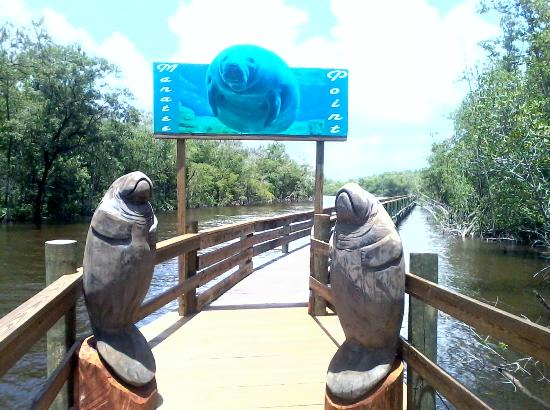 Jungle Erv's Everglades Airboat Tours: Beautiful carvings at manatee point