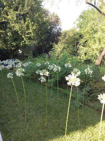 فيلا ماجنوليا ريليه: garden 