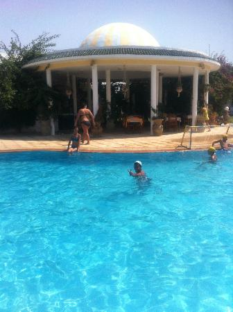 Animation piscine picture of zodiac hammamet tripadvisor for Animation piscine