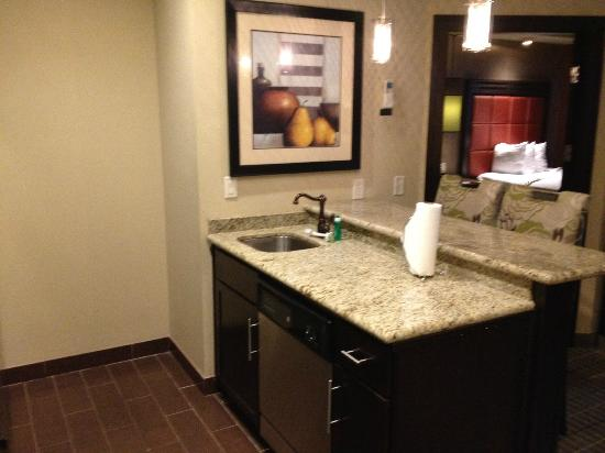 StayBridge Suites DFW Airport North: Kitchen Sink
