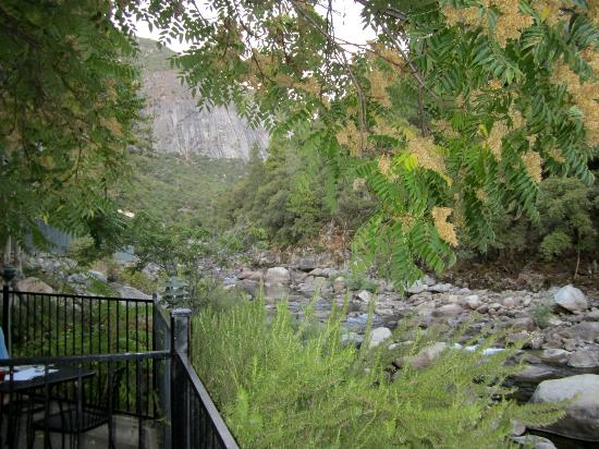 Yosemite View Lodge: view from rooms along the river front