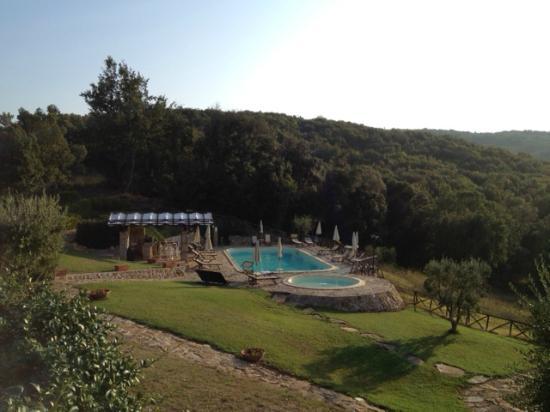Tenuta Casteani Wine Resort: Veduta su Piscine e bar