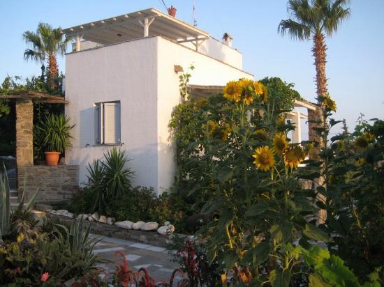 Paros Apartments: Outside
