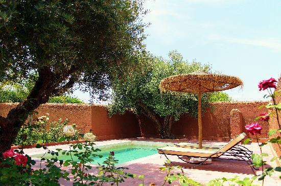 La Maison des Oliviers: piscine suite et jardins