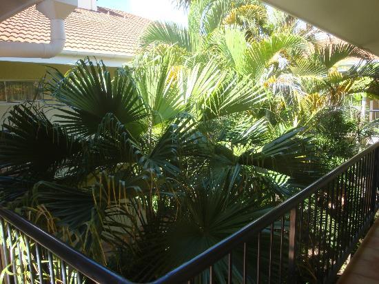 Villa Vaucluse Apartments: il giardino