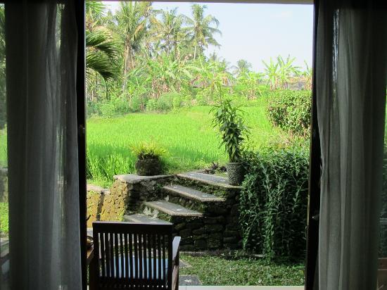 Biyukukung Suites and Spa: uitzicht vanuit kamer