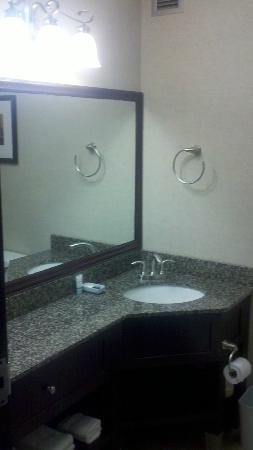 Four Points by Sheraton Kalamazoo: Bathroom