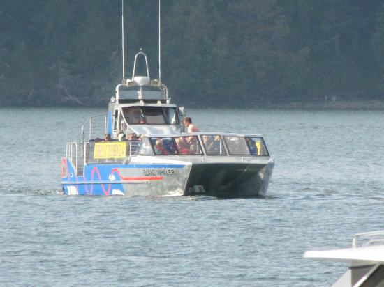 Deception Pass Tours: The open deck boat