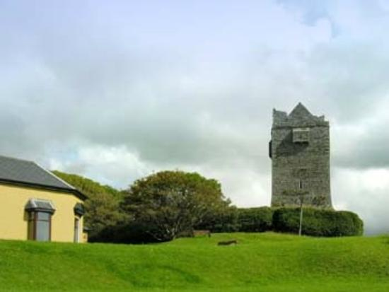 Ballinalacken Castle Country House: the grounds