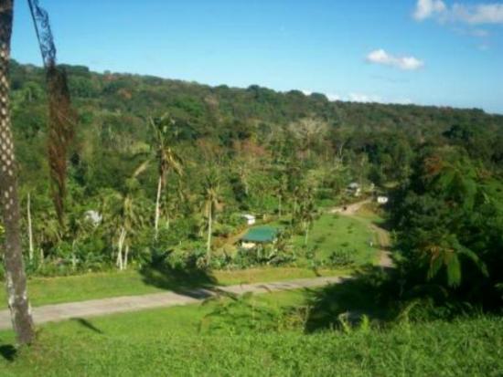 Dave Parker Eco Lodge: Property: creek & cabins