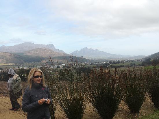 Franschhoek Country House & Villas: View over Franschhoek valley