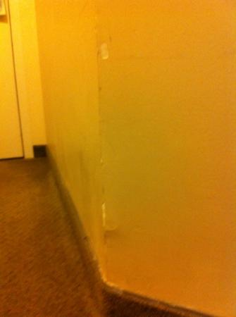 Baymont Inn & Suites Red Deer: Banged up walls.