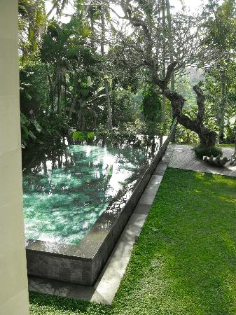 Chapung SeBali Resort and Spa: Private villa pool