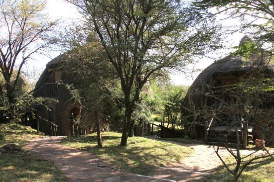 Serengeti Serena Safari Lodge : Aspecto de las habitaciones.