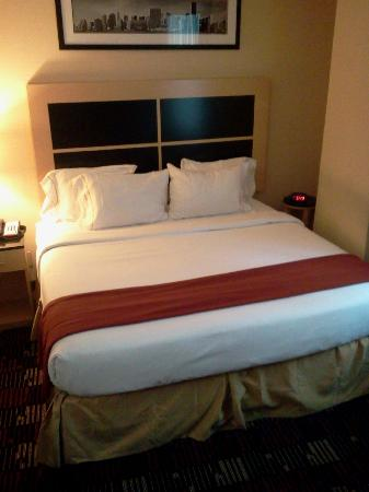 Holiday Inn Express New York City-Wall Street: King Suite2