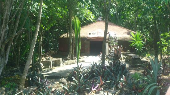Temazcal Cenote Experience: The sweat lodge.