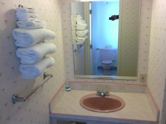 Mar Clair Motel: Bathroom sink, notice toilet in mirror