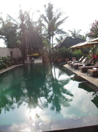 Sri Phala Resort & Villa: the salt water pool