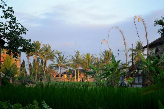 Mulawarman Ubud Bali: Sunrise on Mulawarman street