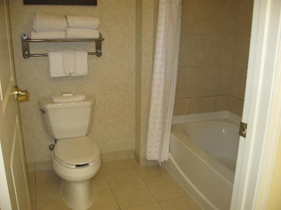 Homewood Suites by Hilton Charleston Airport / Conv. Center: Bathroom