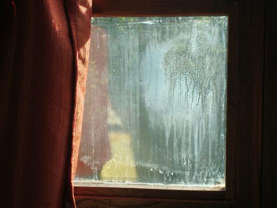 Il Paggino: Fenster