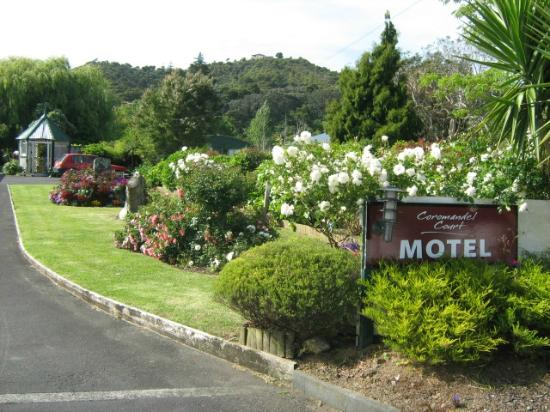 Coromandel Court Motel: Garden