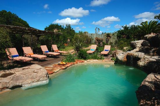 Kariega Game Reserve - Ukhozi Lodge