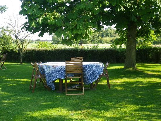 Fenny Castle Tearooms, B&B and Bike Hire: Garden