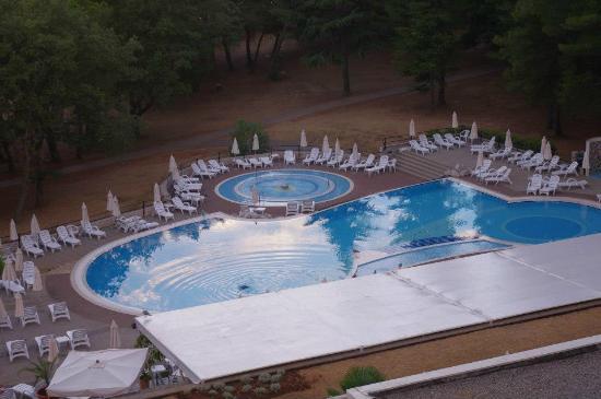 Valamar Rubin Hotel: Despues de los clientes era la hora de las gaviotas....