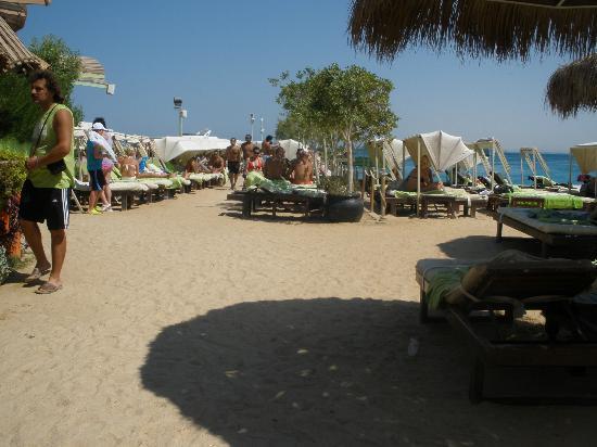 Elysees: Dream beach... Elysses beach