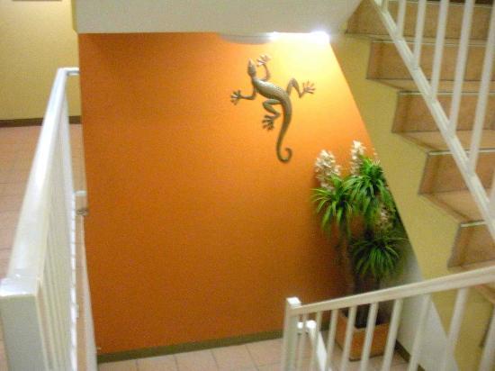 Le Cher Du Monde: stairs