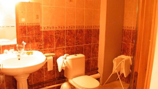 Hotel Le Cheval Rouge: il bagno