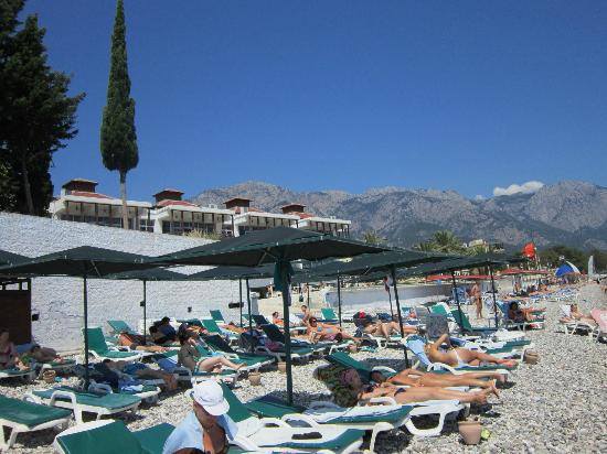 Kemer Dream Hotel : Пляжик- скажем так