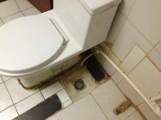 Beijing Z S Hotel: Evacuation douche et wc