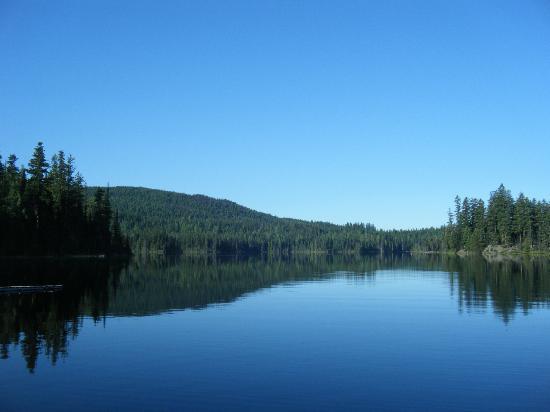 Star Lake Resort: View of the lake