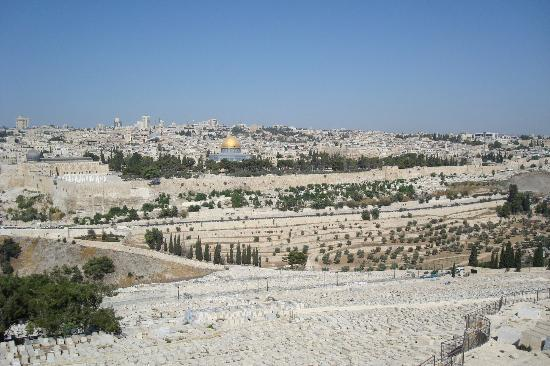 Mount of Olives Hotel: Day view from outside the hotel