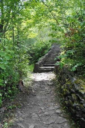 Niagara Gorge Trail: Whirlpool stairs.