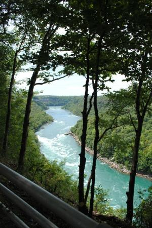 Niagara Gorge Trail: View walking back to Whirlpool Park.