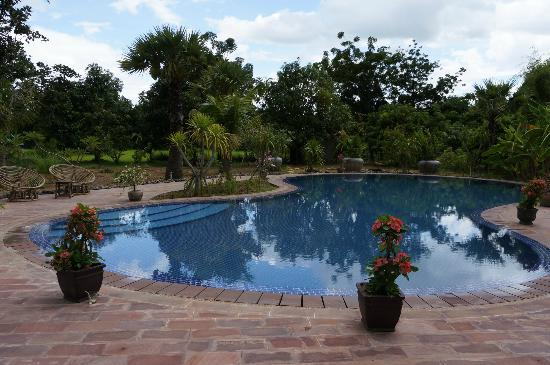 Battambang Resort: Pool in the day