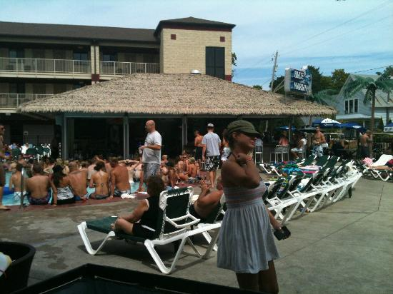 Put-in-Bay Resort Hotel and Conference Center: Blue Marlin Tiki Bar